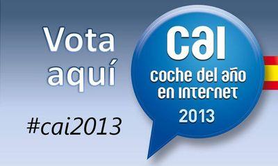 CAI2013-2