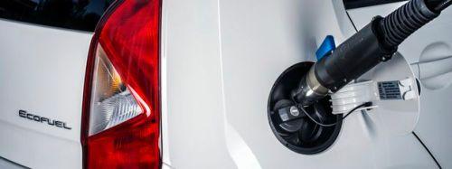 Seat-TGI-ecofuel